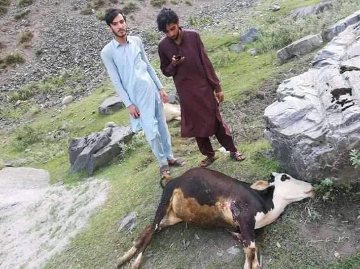 EAzBVAXXYAAqvV6 - Heaven under attack; Neelum Valley | India violates ceasefire