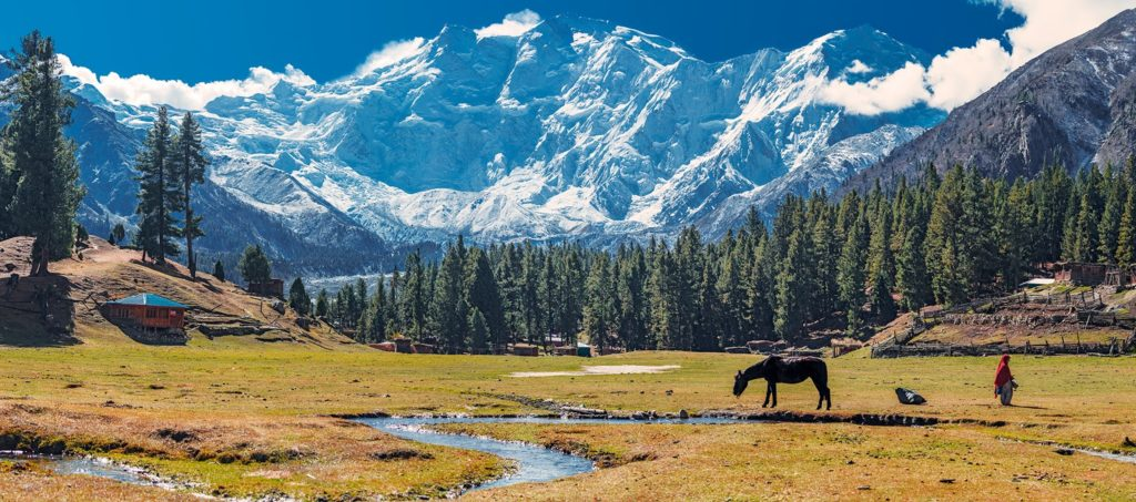 nanga parbat 1024x453 - Nanga Parbat: The killer mountain world's 9th highest peak